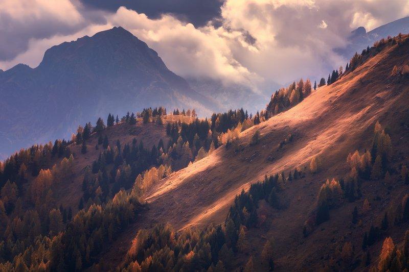 Orange mountainphoto preview