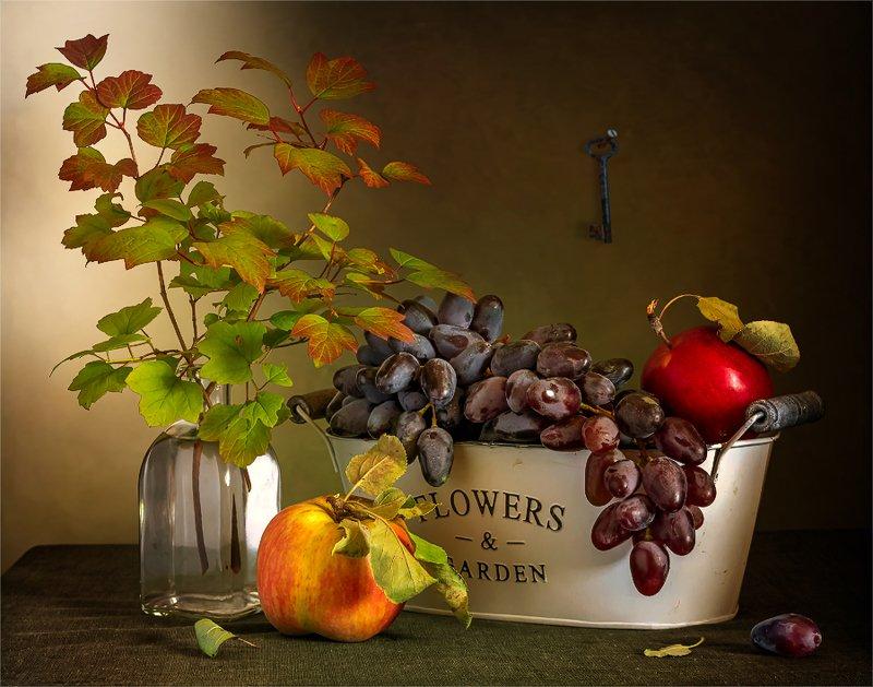 still life, натюрморт,    винтаж,  ретро, виноград, гроздь, ягода, яблоко, фрукт, еда, спелый, вкусный, ветка, листья, ключ, натюрморт с виноградом и яблокамиphoto preview