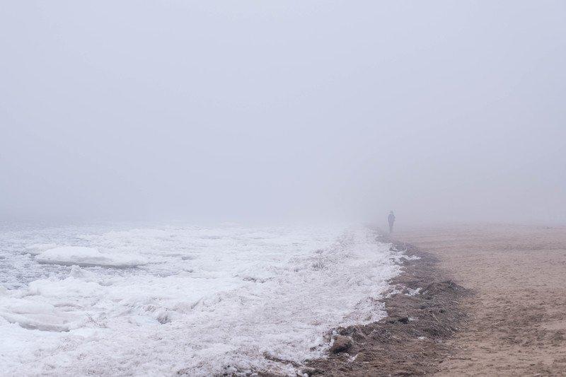 пейзаж, landscape, fog, туман Золотой пляж, Зеленогорскphoto preview