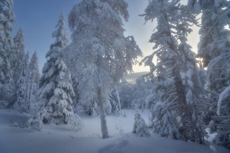 таганай, урал, горы, зима, лес Снежным днемphoto preview