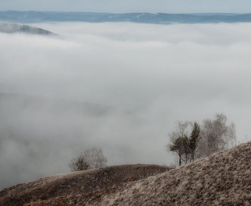 весна. торгашинский хребет.туман. Утра весенний романс.photo preview