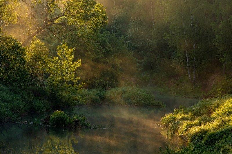 Утренняя негаphoto preview