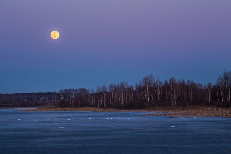 вечер луна полнолуние март Восход луныphoto preview