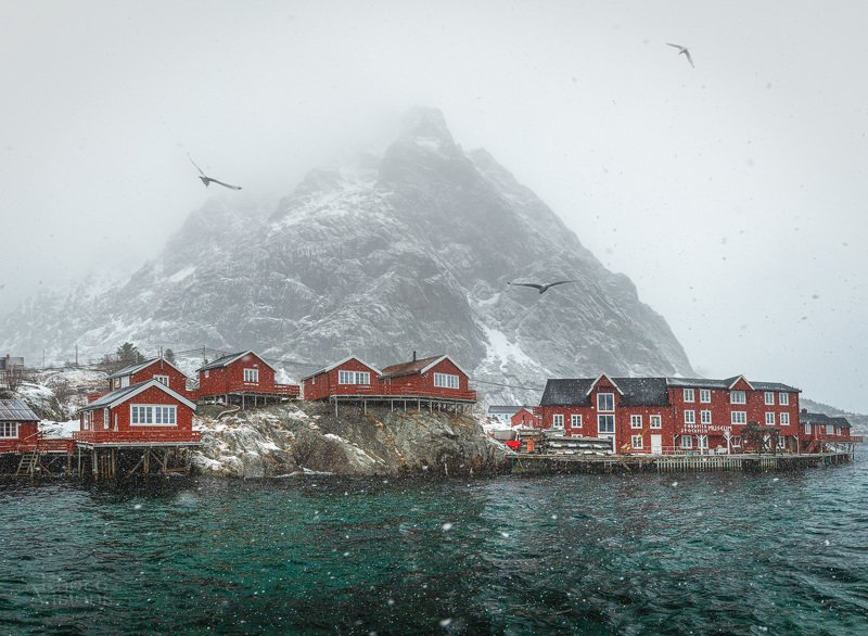 å, lofoten, norway,snow,winter,wintertime,robuer,houses,mountains,white, Snowy Åphoto preview