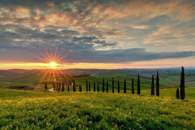 tuscany, тоскана, путешествие по тоскане, tuscany photos landscape, весенняя тоскана, пейзажи тосканы, tuscany landscape photography Under the Tuscan Sunphoto preview
