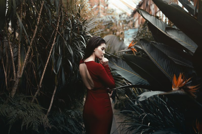 red dress beauty Monikaphoto preview
