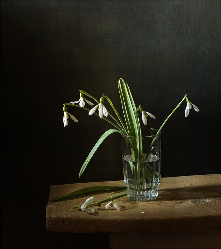 натюрморт, цветы Подснежникиphoto preview