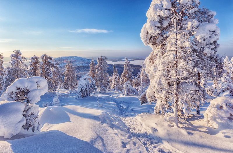 заполярье, гора, снег, ели, волосная, тропинка ...photo preview