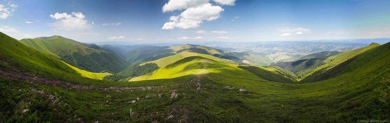 Карпаты, Украина, Боржава, лето Сонячна Боржаваphoto preview