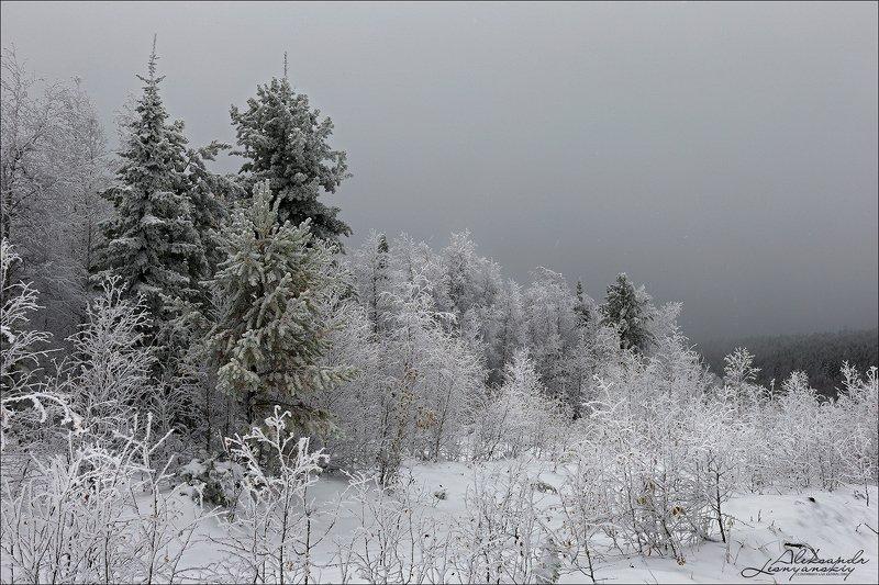 забайкальский край Февральphoto preview