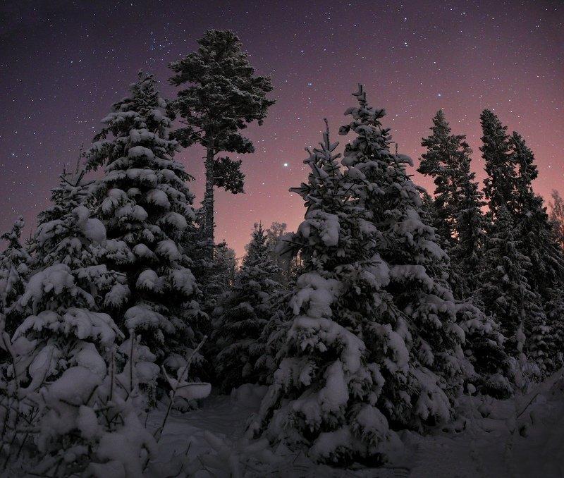 Воспоминания о нормальной зиме;)photo preview