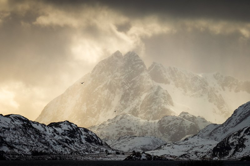 lofoten,norway,norwegian,winter,light,mountains Mighty lightphoto preview