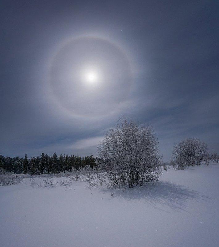 Зимнее галоphoto preview