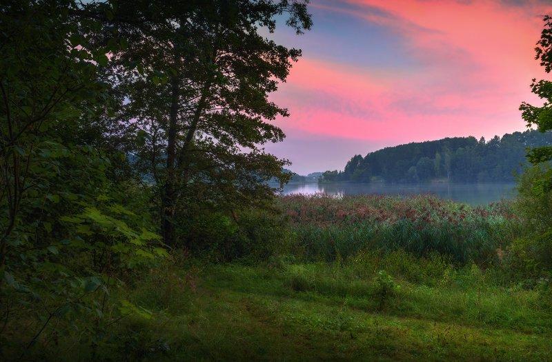 лето, рассвет, озеро, Предрассветнаяphoto preview