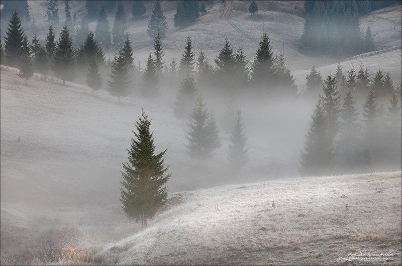 румыния Осенью где-то в Румынииphoto preview