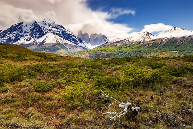 #patagonia#chile#trip#adventure#mood#outdoor Patagonia -Chilephoto preview