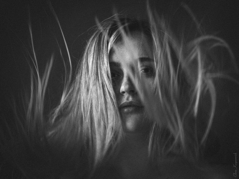 женский портрет, девушка, волосы, чб О покое среди хаосаphoto preview
