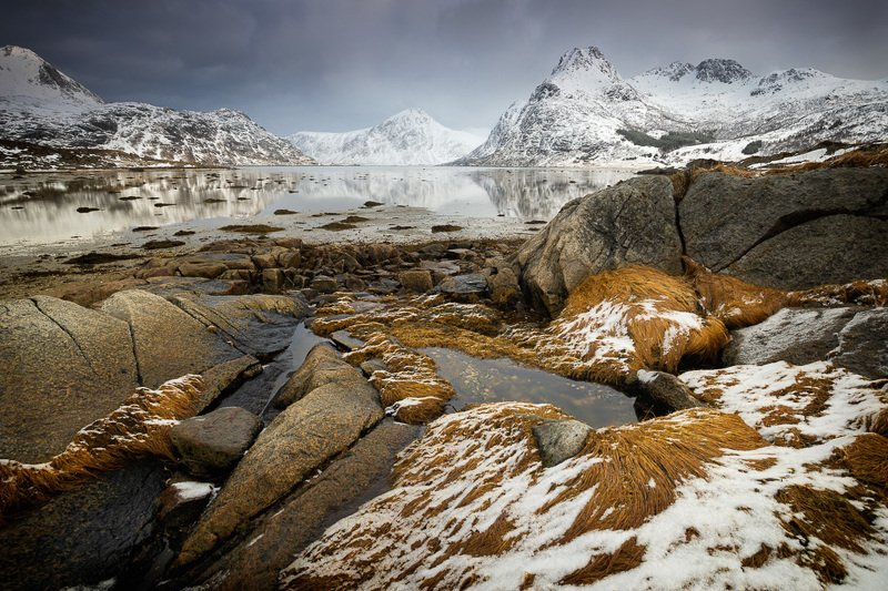 lofoten,norway,winter,shore,coast,beach,flakstadpollen Details of the shorephoto preview