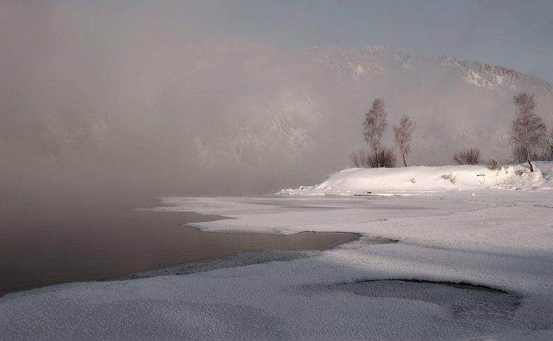 деревья, енисей. туман, островок. В утреннем  тумане.photo preview