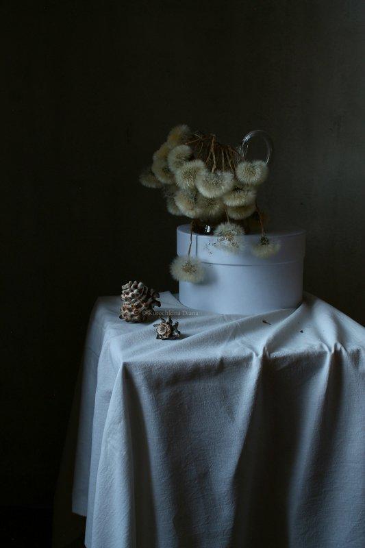 натюрморт, цветы, букет, одуванчики Прошлогодние одуванчикиphoto preview