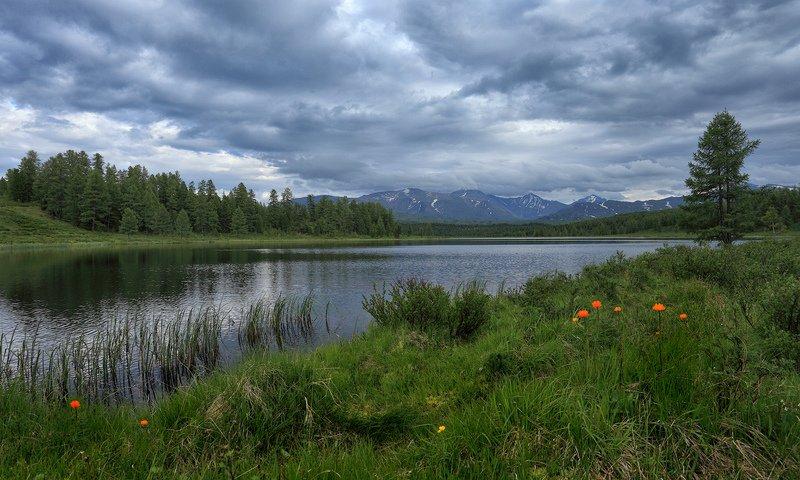 алтай, озеро, киделю, природа, пейзаж, лето, облачность, горы, облака, огоньки Облачно...photo preview