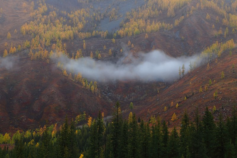 осень в горах Алтаяphoto preview