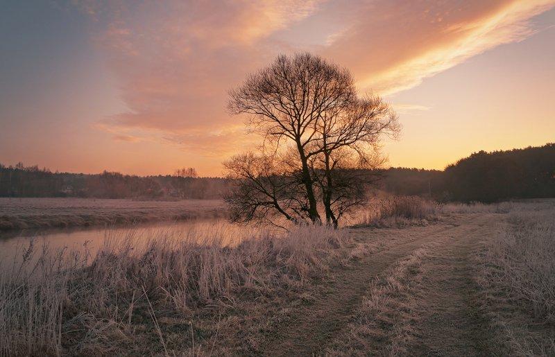 утро, свислочь, туман, весна, пейзаж Весенний рассветphoto preview