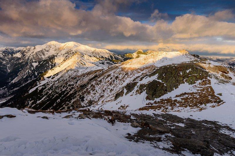 europe, mountains, slovakia, poland, sunrise Morning in the mountainsphoto preview