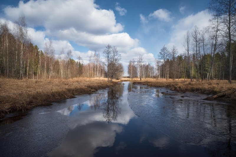 весна, лес, река, лёд, небо, облака, отражение ранняя веснаphoto preview