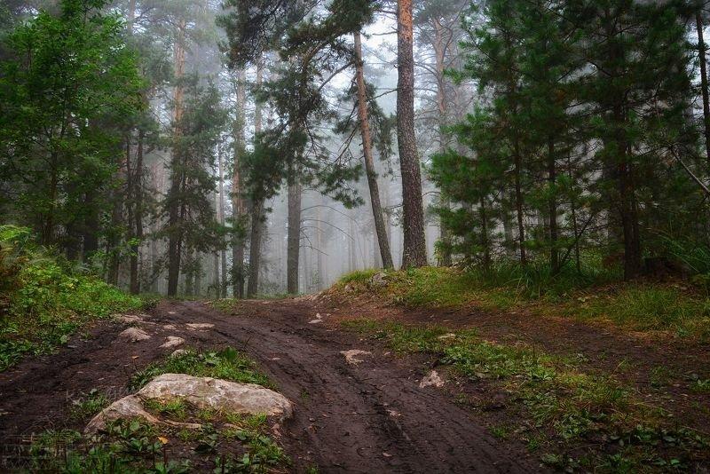 Уральская лесная сказкаphoto preview