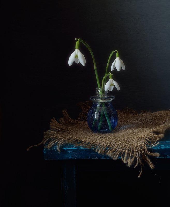 натюрморт,цветы,галантус,весна,подснежники подснежники... фото превью
