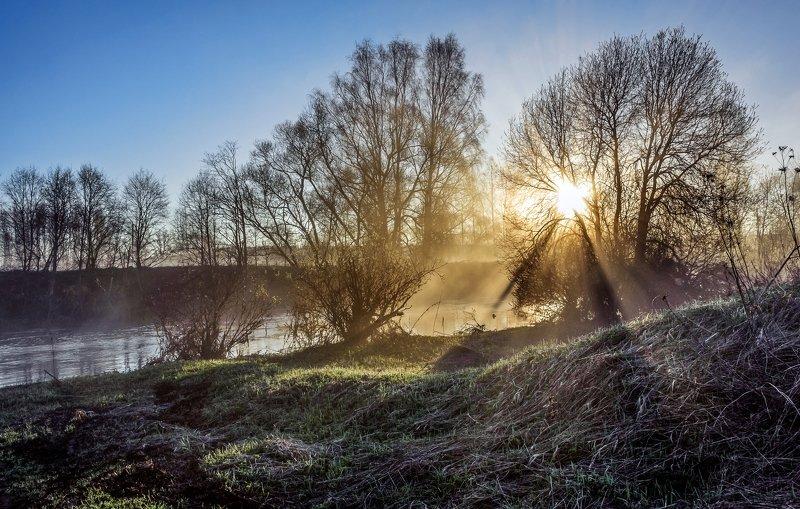 Весенним утромphoto preview
