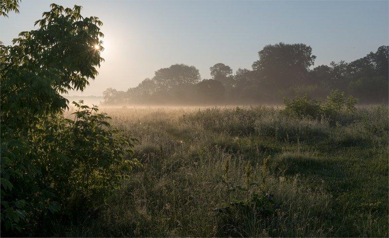 тёплое  летнее утро...photo preview