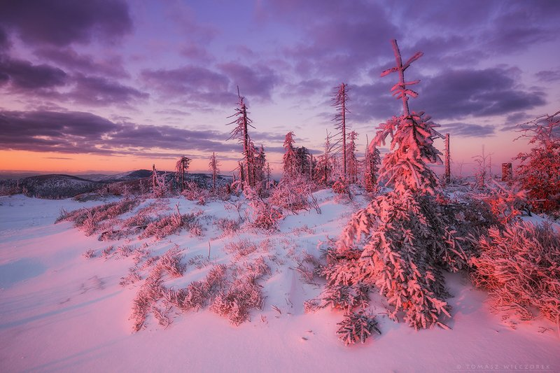 poland, polish, landscape, sunrise, sunset, colours, winter, awesome, amazing, adventure, travel, beautiful, morning, snow, frozen, light, mountains Warm light of frosty morningphoto preview