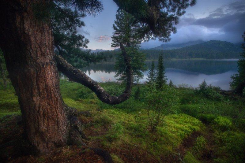 ергаки, горы, саяны, сибирь Летним утромphoto preview