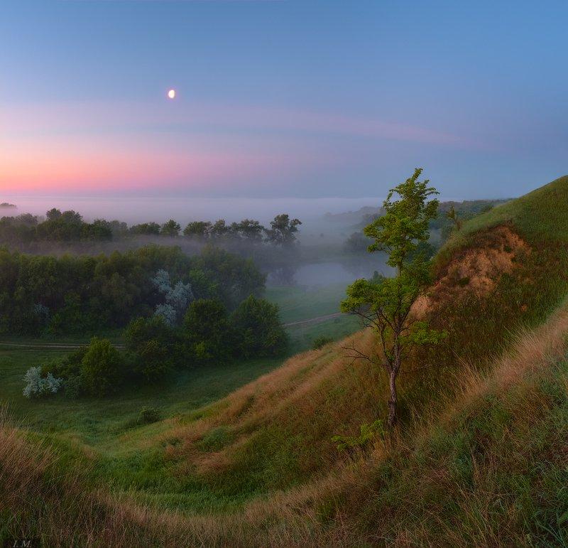 пейзаж, сумерки, река, вид, холмы, дерево, луна, весна, луг, туман, утро, тишина, morning, dawn, silence, landscape, river, grass, tree, fog, misty, Moon, foggy, spring, hills, sky, meadow в предрассветной тиши ..photo preview
