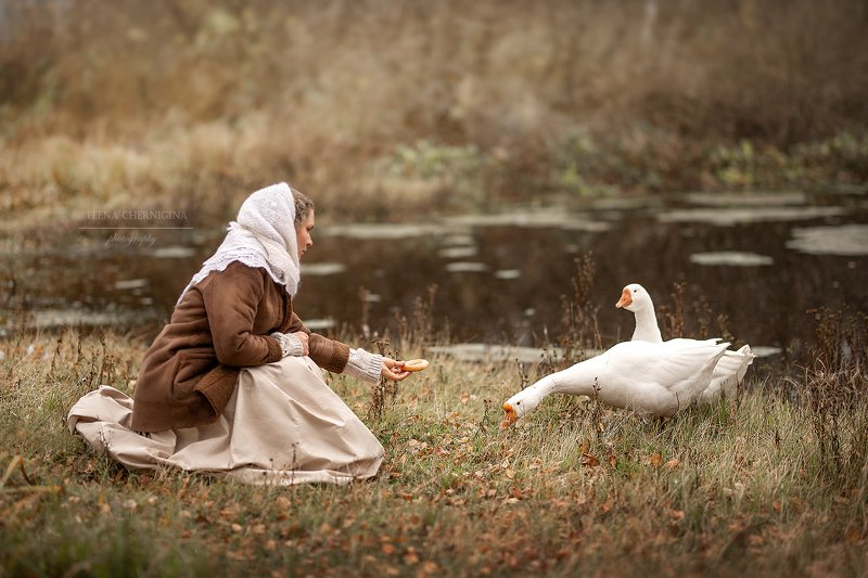 художественная фотография, природа, деревня, ретро, фото с животными, гуси На прудуphoto preview