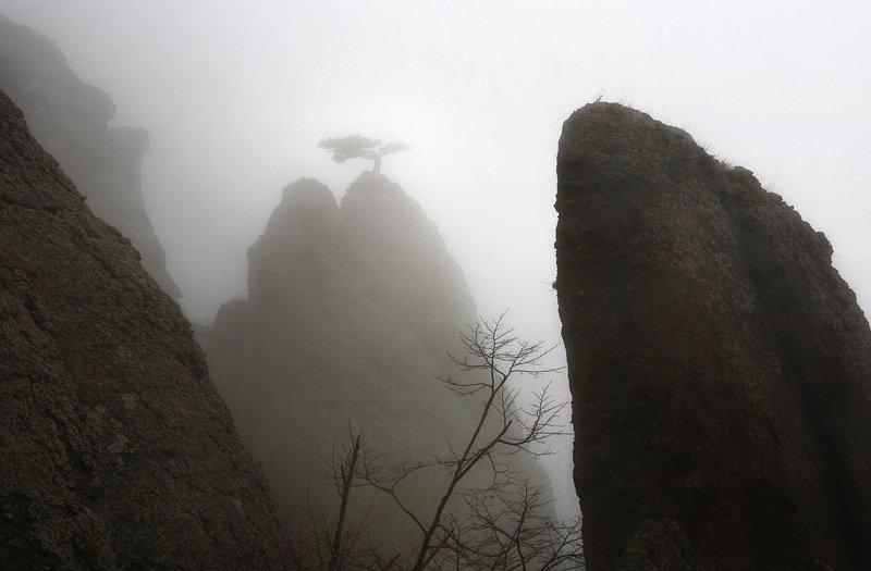 крым, горы, осень, демерджи Туман на Демерджиphoto preview