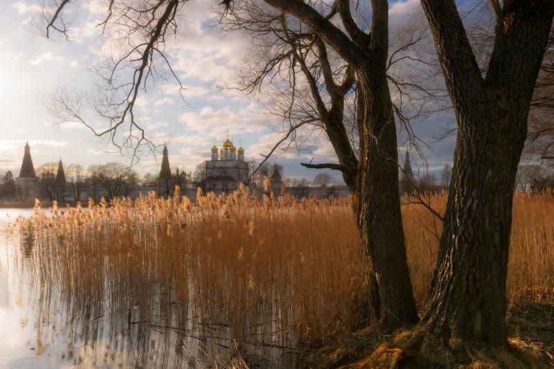 #весна #облака #деревья #озеро #разлив #ветер #небо И ветер рисовал сюжетphoto preview