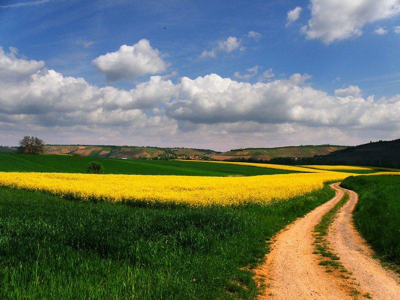 Дорога за облакамиphoto preview