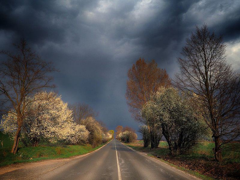 hungary, roads, country, country roads, spring, clouds, photography, lights, colors On the road...photo preview