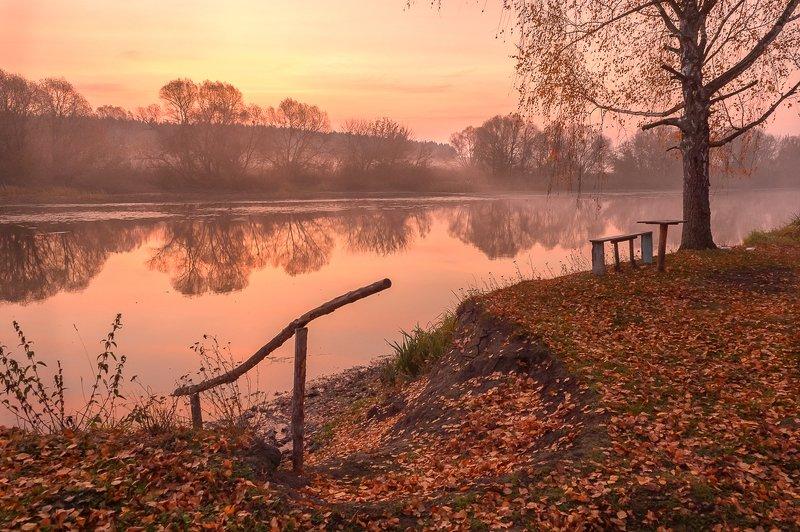 пейзаж,осень,утро,золотая осень,россия \