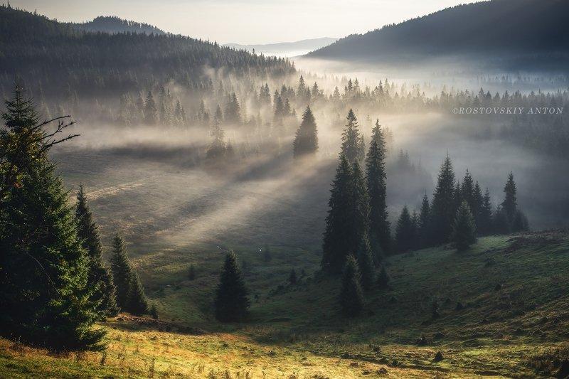 Румыния, фототур, утро, восход, туман,  Утро в Карпатах, Румыния | фототурphoto preview