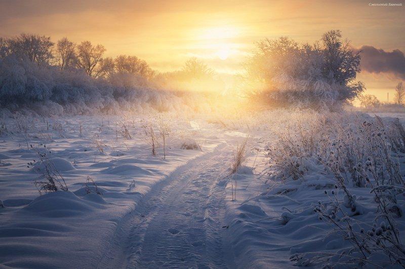 туман, зима, мороз, следы, снег, вечер, закат Туманный путьphoto preview