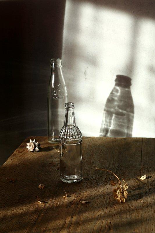 натюрморт, солнце, кот, солнечный день, бутылочки, стекло Солнечный деньphoto preview