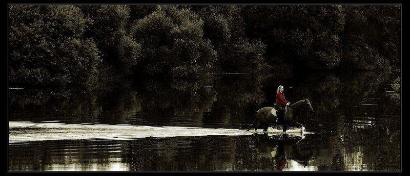 вода, лошадь, тишина Рассекая тишину...photo preview