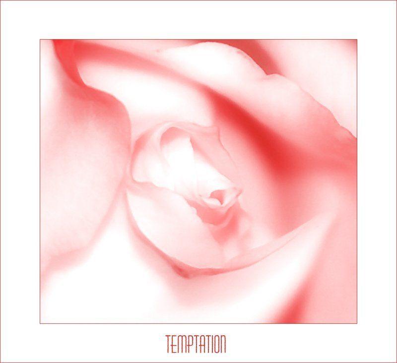 просто, так Temptationphoto preview