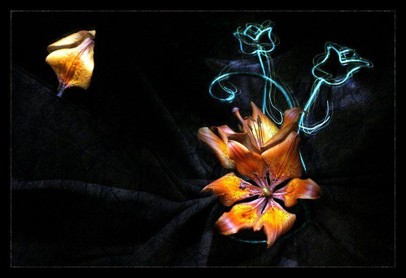 световая кисть Магия Цветовphoto preview