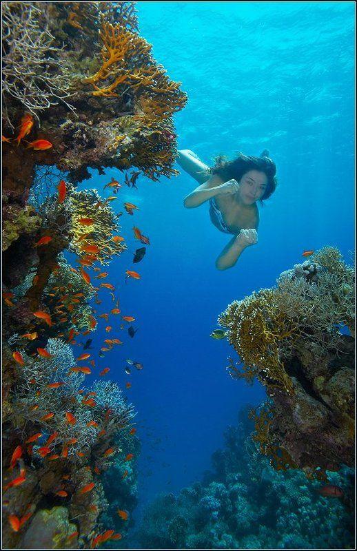 подводная амазонкаphoto preview