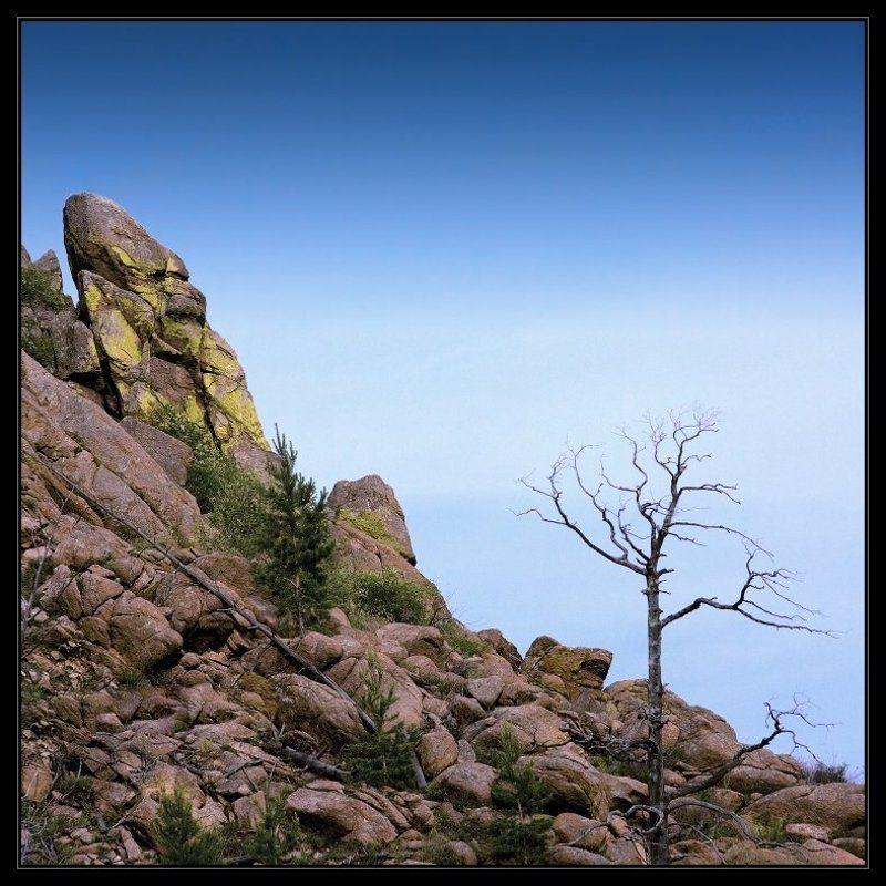 бурятия, горы, небо, обезьяна Хранители древних тайнphoto preview